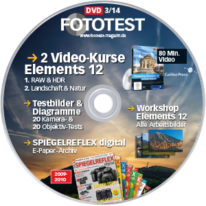 DVD-Label-FT-314